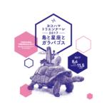 ヨコハマトリエンナーレ2017 参加アーティスト発表